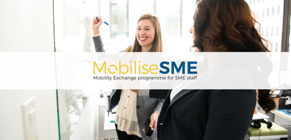 MobiliseSME website
